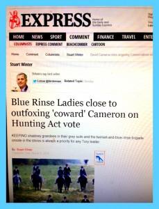 sun express pic.jpg blue fox conservatives against fox hunting blue frame