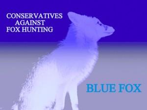 foxprofilebodypaleblue.jpg blue fox cconservatives against fox hunting