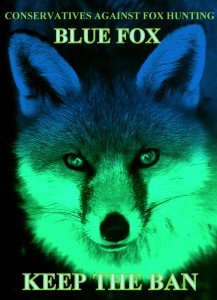 fox face blue green glow blue fox words