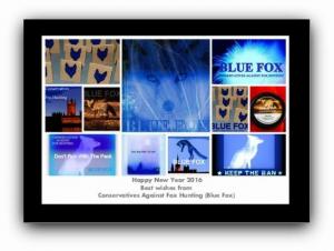 blue fox mix
